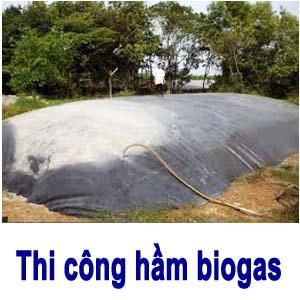 Thi công hầm biogas