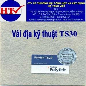 Vải địa kỹ thuật TS30