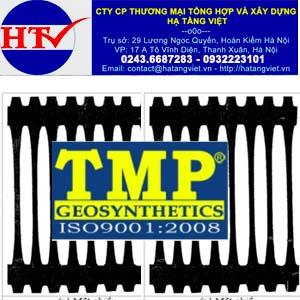 Lưới địa kỹ thuật TMP GG60PE
