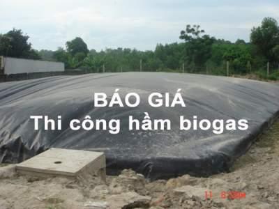 Báo giá thi công hầm biogas